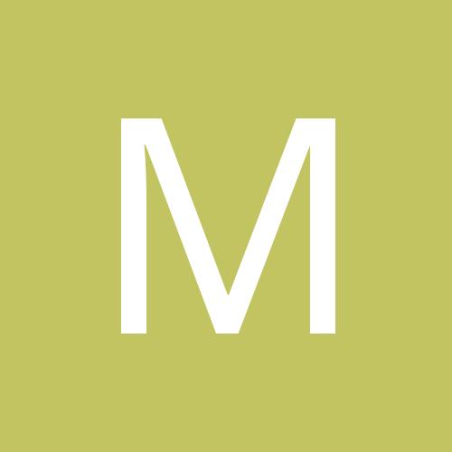 metastigmat
