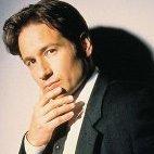 Mulder Fox